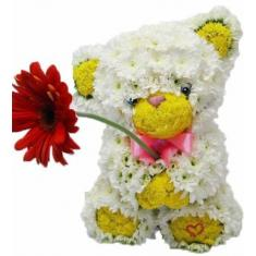 "The song ""Teddy with flower"""