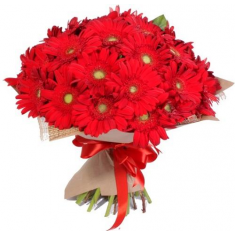 "Bouquet ""35 red gerberas"""