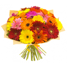 "Bouquet ""25 colour gerberas"""