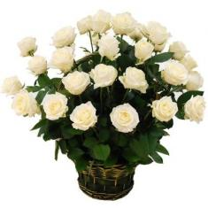 "Basket ""35 white roses"""