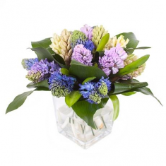 "Bouquet ""Hyacinth secret"""