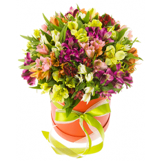 25 Alstroemeria in the hat box