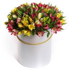 35 Alstroemeria in the hat box
