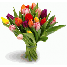 "Bouquet ""21 color Tulip"""