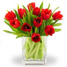 "Bouquet ""11 red tulips"""