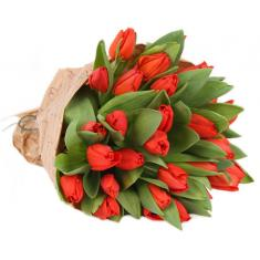 "Bouquet ""31 red Tulip"""