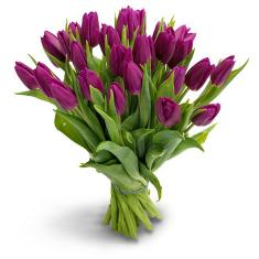 "Bouquet ""25 purple tulips"""