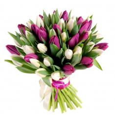 "Bouquet ""51 purple-white Tulip"""