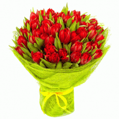 "Bouquet ""51 red Tulip"""