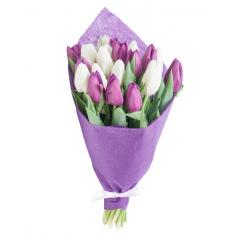 "Bouquet ""19 purple-white tulips"""