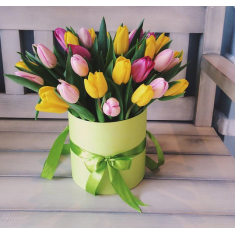 29 mix tulips in a hat box