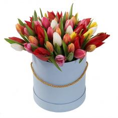 45 mix of tulips in a hat box