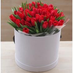 Red tulips in a hat box
