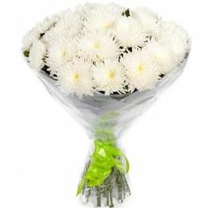 "Bouquet ""15 white chrysanthemums"""