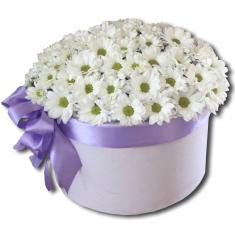 White chrysanthemums in a hatbox