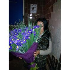 "Bouquet ""51 Blue Iris"""