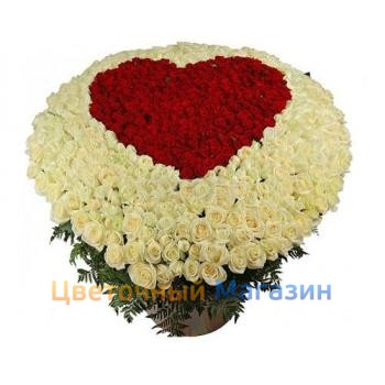 Flaming Heart of 501 Roses