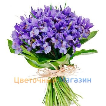 "Bouquet ""Blue""Bouquet ""Blue"""