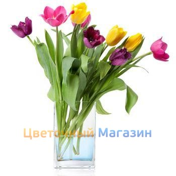 "Bouquet ""9 colored tulips"""