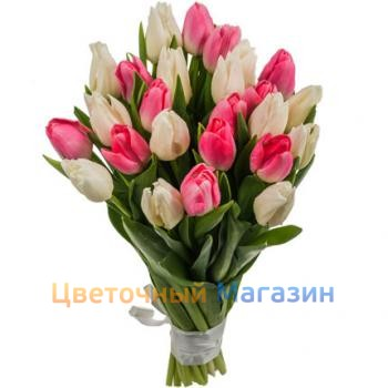 "Bouquet ""25 pink-white tulips"""