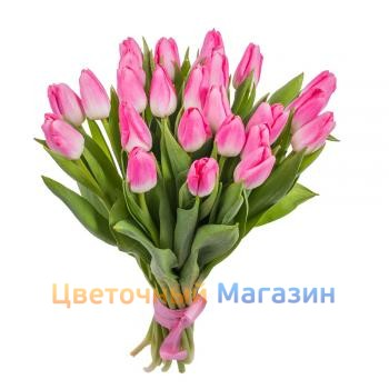 "Bouquet ""25 pink tulips"""
