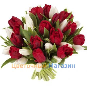 "Bouquet ""25 red and white tulips"""