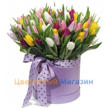 51 Tulip mix in a hatbox