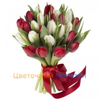 "Bouquet ""25 red and white tulips""Bouquet ""25 red and white tulips"""