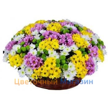 "Basket ""Rainbow chrysanthemum""Basket ""Rainbow chrysanthemum"""