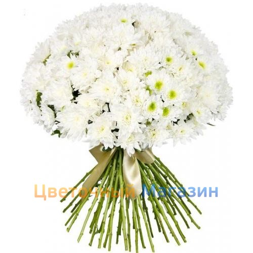 "To buy a Bouquet of 51 white chrysanthemum"", to Deliver a ..."